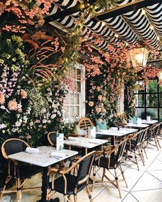 Restaurant Guide ✨ See where we're dreaming of dining al fresco via the link in our bio – and and share your favorite spots below! Restaurant En Plein Air, Deco Restaurant, Modern Restaurant, Shabby Chic Restaurant, Restaurant Guide, Small Restaurant Design, Coffee Shop Design, Cafe Design, Cute Coffee Shop