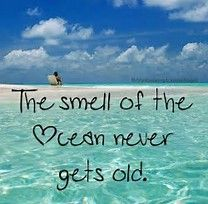 I must laugh at this one. My husband says the ocean smells like dead sea life.