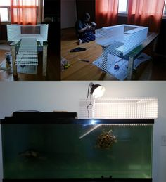 Custom Turtle Basking Platform by Lemia-Dizao on DeviantArt