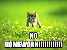 No Homework! | Teen Opinion Essay on homework | Teen Ink