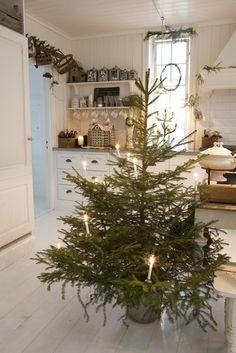 perfect tree: keep it simple