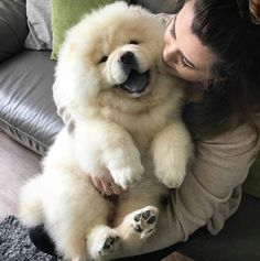 LOOK AT THIS FLUFF BALL!!!