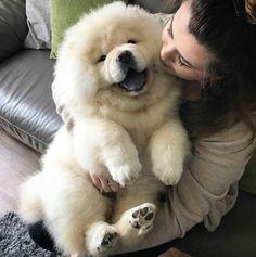 Happy puppy!!
