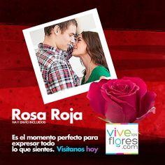 Llego el momento perfecto para que le demuestres lo importante que es para ti. Celebra el día del Amor y la Amistad a precios increíbles en nuestra Rosa Roja. Visitanos en www.vivelasflores.com