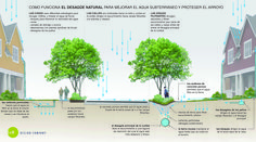 http://www.riqualificazioneurbana.com/it/rain-garden/