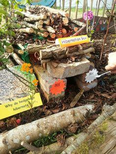 ... hibernation hibernation boxes hibernation crafts autumn eyfs outdoor