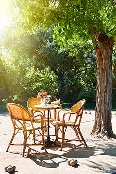 Get the Look: The Parker Hotel's Lush Landscape // Palm Springs, French bistro chairs, petanque set