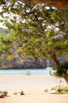 Benirràs, de meest idyllische baai van Ibiza