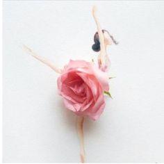 ballet !!!! i like you