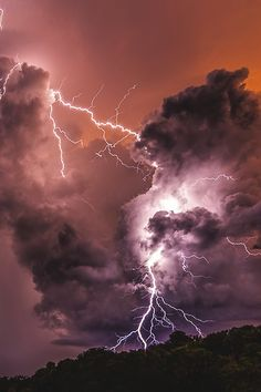 nature photography, the awesome power of life on earth