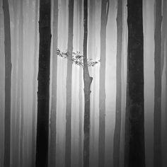 Mute, photography by Hengki Koentjoro