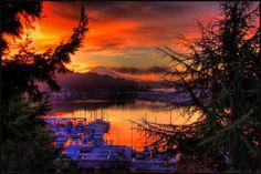12-31-2011 Gig Harbor by aquilasteve on Flickr.