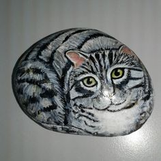 Pretty cat on stone...by Doe