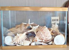 Repurposed Fish Tank