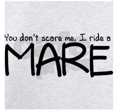 #ArabianHorses #Humor #Mare