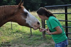 Te getting a treat :) #horselove #equine #paint #horses