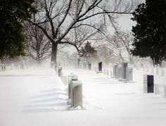 Spring Snow Storm at Arlington National Cemetery