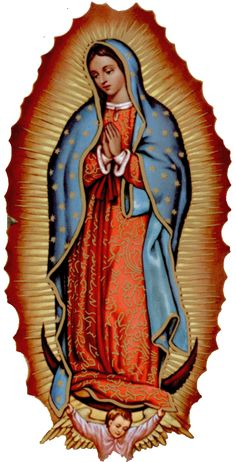 Virgin Mary Of Guadalupe >> 1000+ images about Lady of Guadalupe on Pinterest | Virgen de guadalupe, Virgin mary and Lady