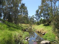 Darebin Creek, near Bell Street. Photo taken by Nick carson in January Melbourne, Victoria, Australia Melbourne Victoria, Victoria Australia, Golf Courses, Places To Go, Things To Do, Country Roads, Street Photo, Pictures, Image