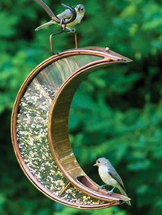 You'll want to hang this Moon Bird Feeder in a place that you can watch it all day or all night.