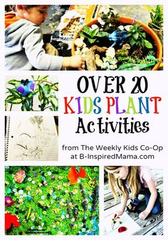 20+ Kids Plant Activities and Plant Crafts from The Weekly Kids Co-Op at http://B-InspiredMama.com