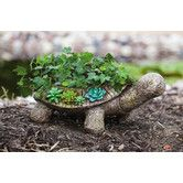 Awesome 73 Succulent Turtle Topiary Ideas For Your Garden Unique Gardens, Amazing Gardens, Beautiful Gardens, Garden Planters, Garden Art, Garden Design, Potted Garden, Cement Planters, Garden Crafts