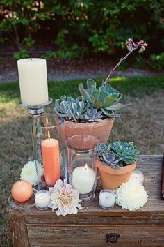 Succulents and terra cotta: love this whole wedding