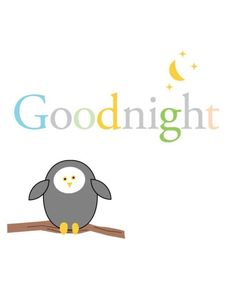 Good night everybody! Love you all! School tomorrow :/ but oh will I'll live huh!? Yup! All in my prayers!