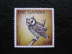 Owl post stamp Gambia.