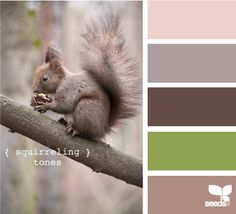 ...ooh i like these colors