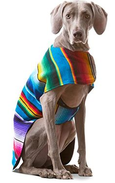 Dog Clothes  Handmade Dog Poncho from Authentic Mexican Blanket by Baja Ponchos No Fringe XXL >>> Continue to the product at the image link. (This is an affiliate link) #dogapparel