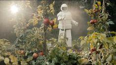 Robot Frank (2012)