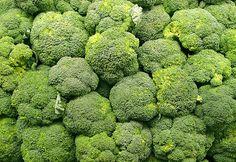 brocolis selva amazonica