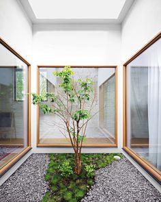 Clinton-Hill---Indoor-Garden.jpg