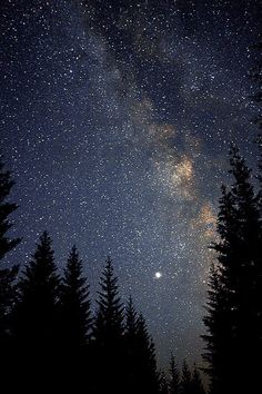 Late Night Camp View by Bobshots on Flickr.