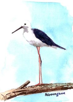ACEO Limited Edition  A lonely shorebird by annalee377 on Etsy