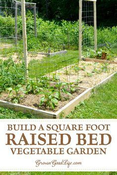 How to Build a Square Foot Garden How to Build a Raised Garden Bed for a Square Foot Garden: Square Vegetable Garden Planters, Backyard Vegetable Gardens, Container Gardening Vegetables, Garden Pests, Indoor Garden, Building A Raised Garden, Raised Garden Beds, Raised Beds, Organic Horticulture