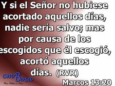 Marcos 13:20