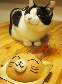 You Baked This For Me?