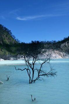 Kawah Putih - Bandung Indonesia