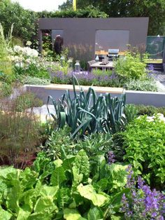 2013 Hampton Court Flower Show. This was a more serious edible garden with more subtle combinations of edible and non edible plants. There was something really lovely about...