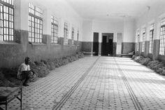 Holocausto brasileiro: 50 anos sem punição | O TRECO CERTO