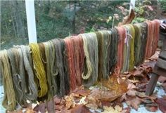 A good blog about mushroom dyes