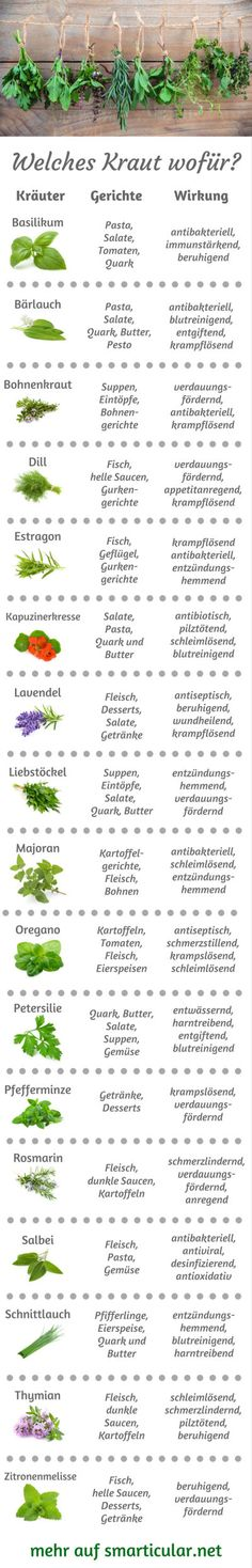 Küchenkräuter-ABC: Welches Kraut wofür, was passt wozu? So many garden herbs, but you do not know where to go? Then let yourself be inspired by our little herbal ABC, so you always know which herbs are best for your food! Nutrition Plans, Health And Nutrition, Kitchen Herbs, Little Gardens, Healthy Diet Recipes, Food Facts, Health Facts, Herb Garden, Eat Smart