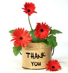 Floral Thank You Red Gerbera Daisy Flowers Postcard Thank You Pictures, Thank You Images, Thank You Messages, Thank You Gifts, Thank You Cards, Thank You Quotes For Support, Thank You Greetings, Thank You Flowers, Flowers For You