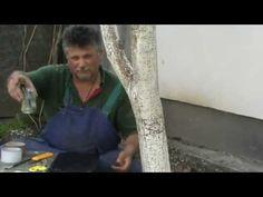 Védekezés a levéltetvek ellen. Gardening, Garten, Lawn And Garden, Horticulture