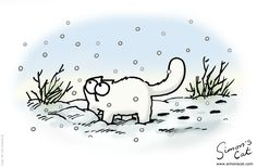 A look at all of the Simon's Cat Christmas Cartoons since they began through the most recent plus the new Simon's Cat Holiday Animated Stickers for iOS. I Love Cats, Crazy Cats, Cool Cats, Simons Cat, Christmas Cartoons, Christmas Cats, Warrior Cats Series, Cat Jokes, Here Kitty Kitty