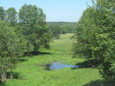 Ferma jeleniowatych w Kosewie Górnym.  Źródło: www.it.mragowo.pl