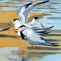 "Robert Greenhalf (British, b. - ""Little terns"" - Woodcut Linocut Prints, Art Prints, Block Prints, Bird Illustration, Wood Engraving, Wildlife Art, Print Artist, Gravure, Art Plastique"