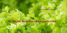 23 Major Benefits of Organic Diet